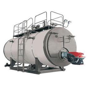 WNS系列全自动燃油(气)龙8国际是什么